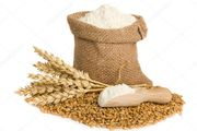 Мука пшеничная оптом высший сорт и 1с